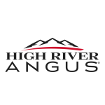 High River Angus